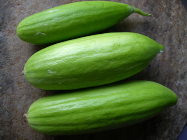 Hairy mature uses a cucumber